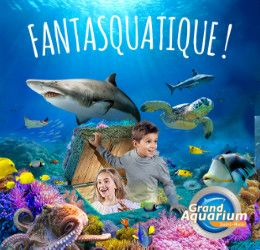 GASM - Grand Aquarium de St Malo